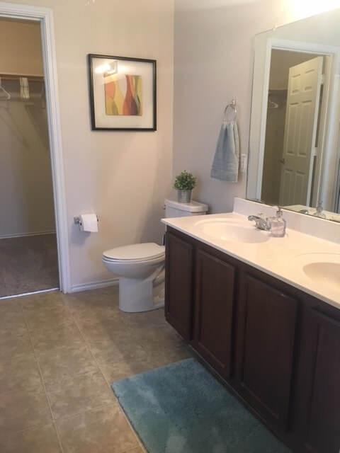 Ensuite master bath with dual sinks