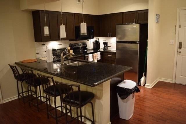 Kitchen - (Fridge, dishwasher, oven, pots, toaster, coffee)