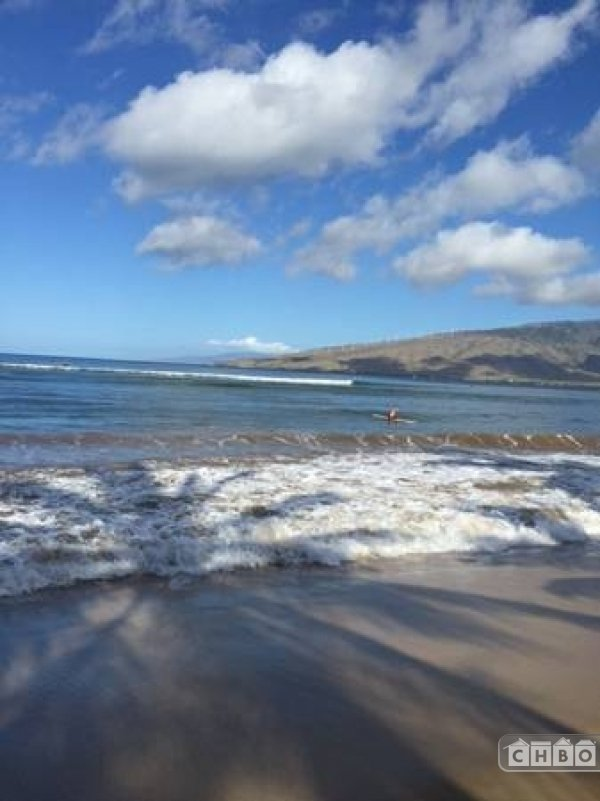 image 8 furnished 1 bedroom Apartment for rent in Kihei, Maui