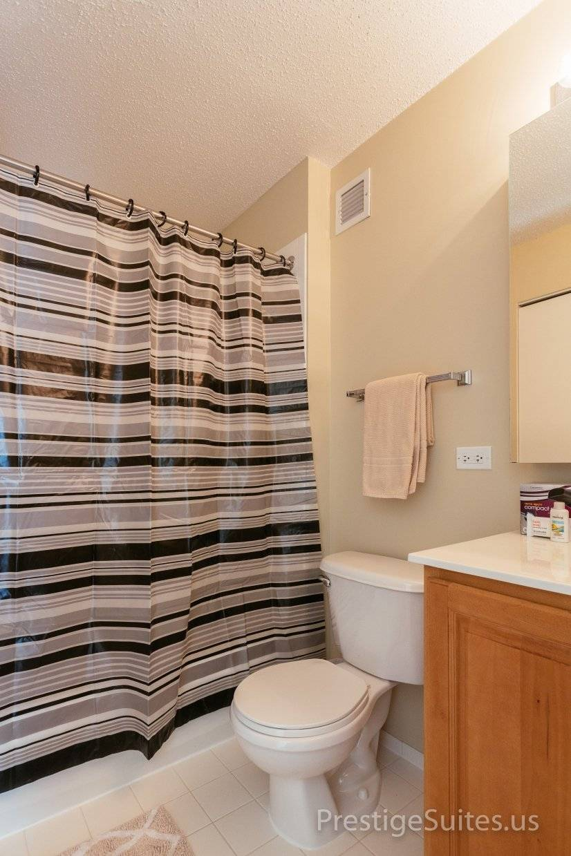 image 15 furnished 2 bedroom Apartment for rent in Loop, Downtown