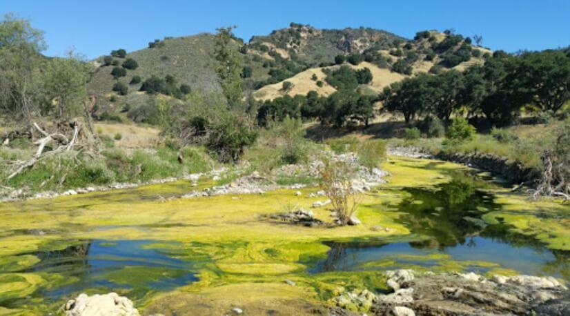 Many great hiking trails including Malibu Creek State Park.