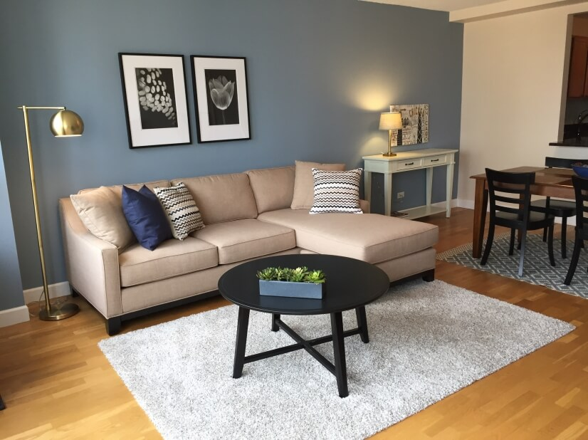 1/1 Great Location Furnished Chicago