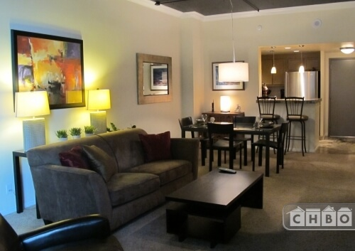 Furnished Executive Denver LoDo Condo