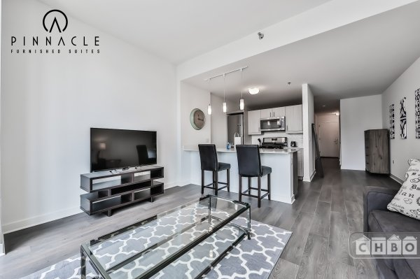 image 3 furnished 1 bedroom Apartment for rent in Loop, Downtown