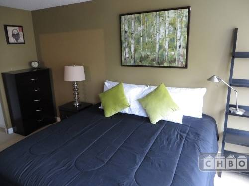 Exclusive Suites 1 BED 30 E. Huron #1308
