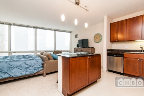 image 5 furnished Studio bedroom Townhouse for rent in Loop, Downtown