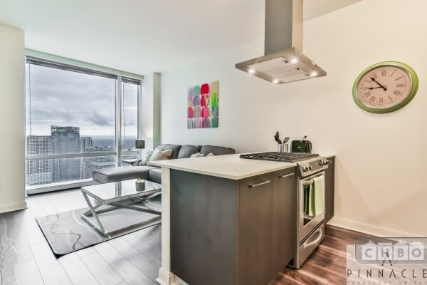 Prime Location Downtown Highrise-1 BR