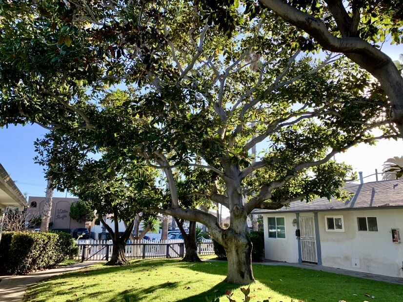 $2400 1 Pacific Beach Northern San Diego, San Diego