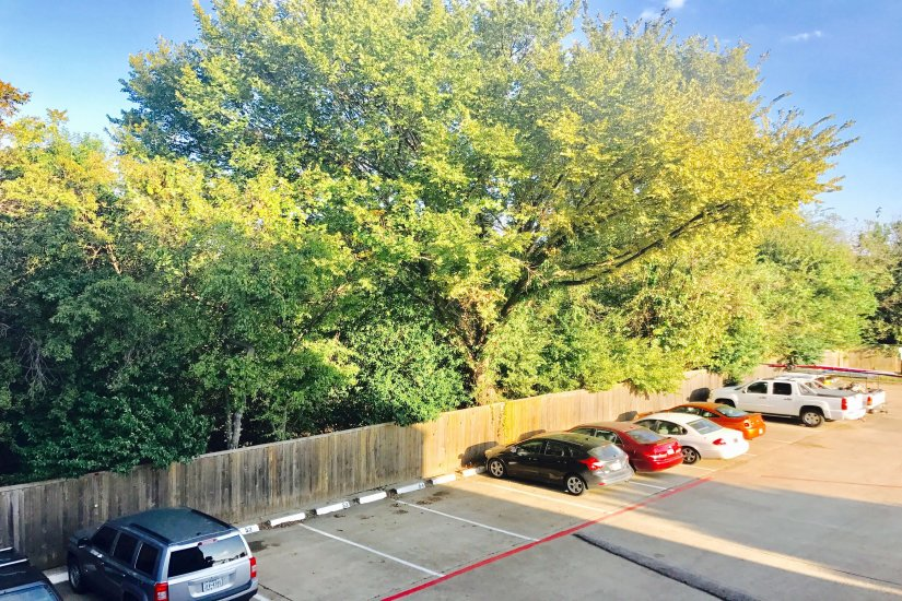 $2595 2 Oak Highlands Dallas, Dallas-Ft Worth