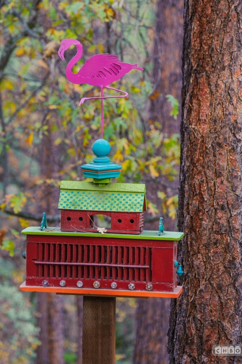 Ginny's other passion - Birdhouses.  They are all over the p