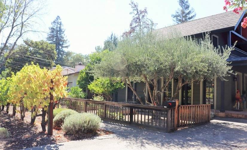 Charming Calistoga Home Near Downtown