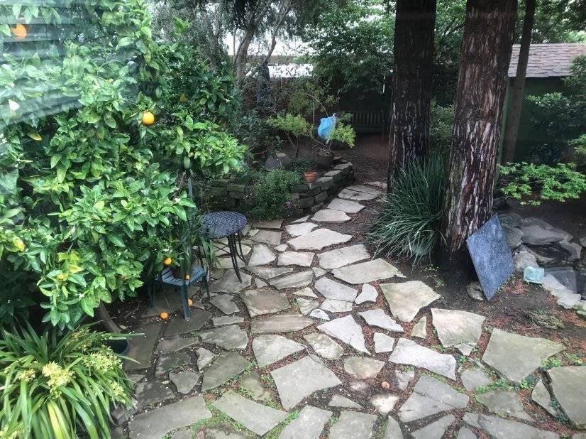 Big backyard- pet friendy