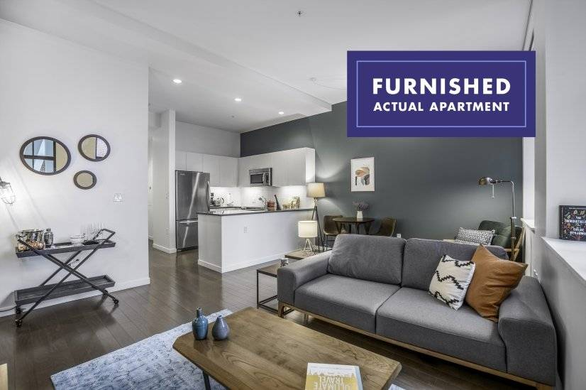 Furnished, Bright Financial District 1BR