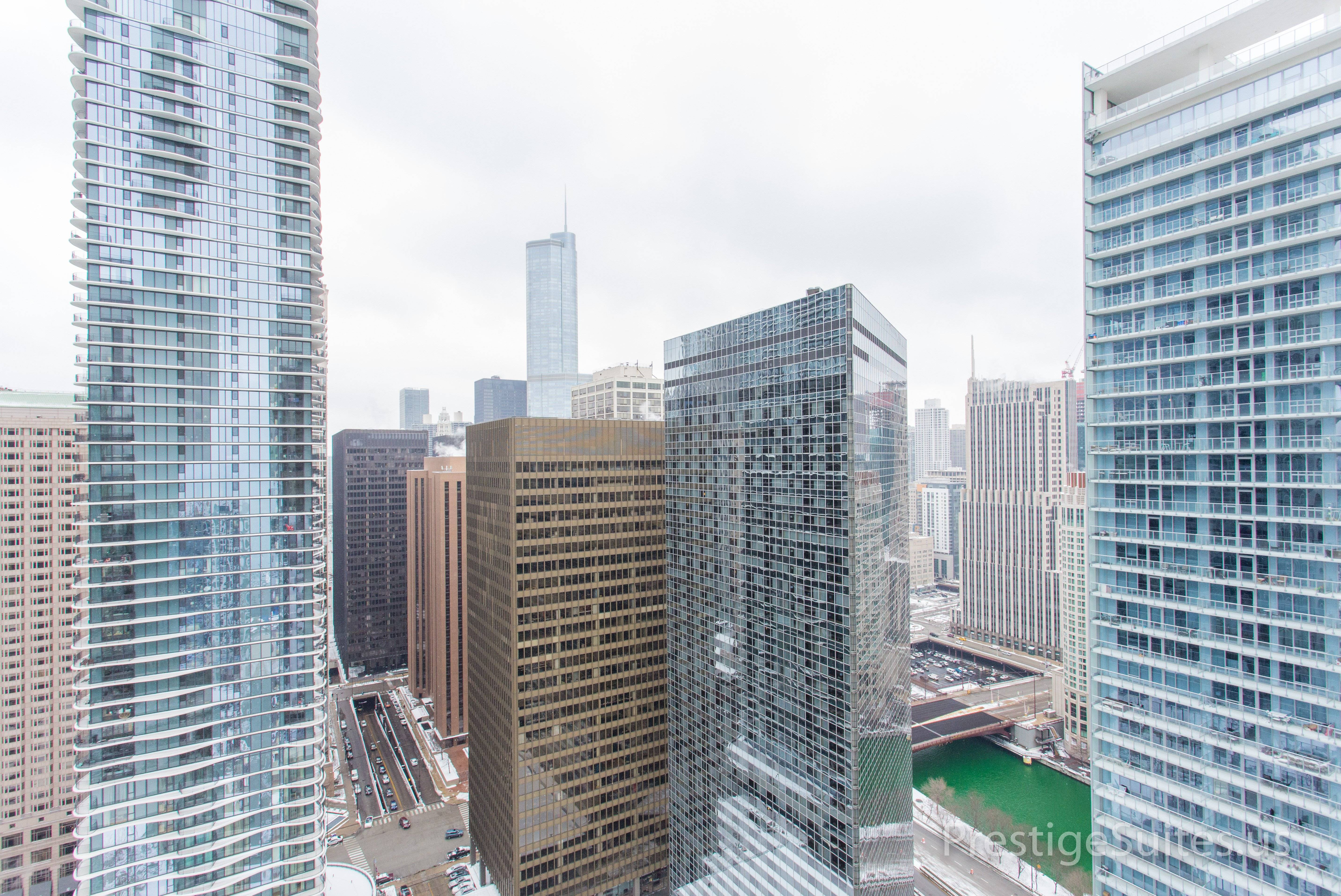 image 20 furnished 1 bedroom Apartment for rent in Loop, Downtown
