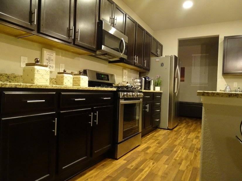 Modern Kitchen New espresso cabinets