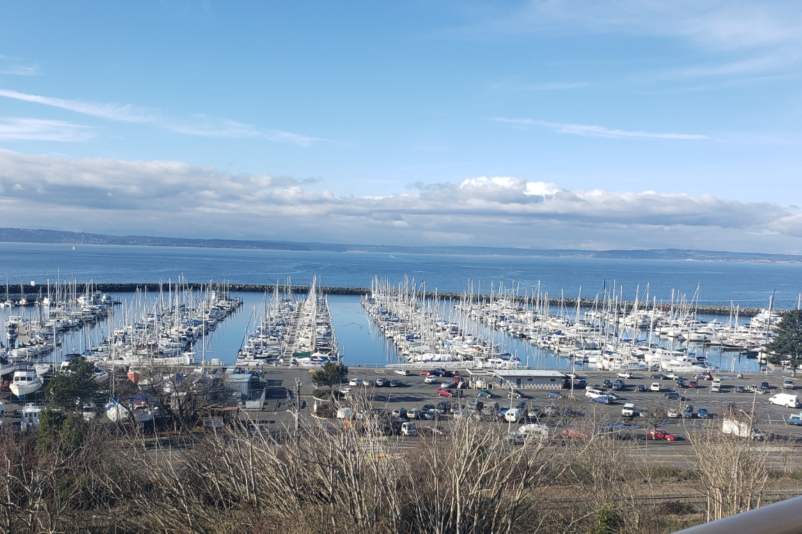 Shilshole Bay and Olympic Mountain Views