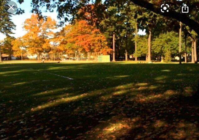 Great walking park 2 blocks away