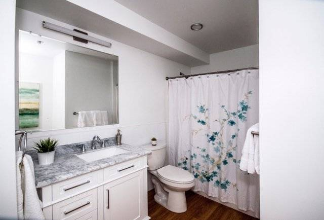 image 4 furnished 2 bedroom Apartment for rent in Mission Hill, Boston Area