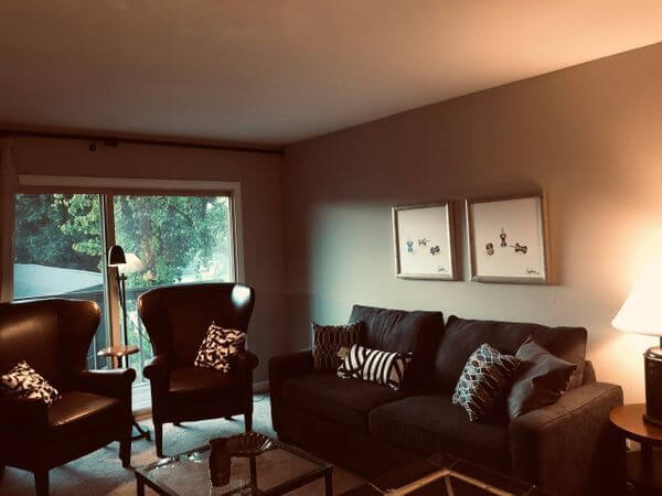 Updated I bedroom Mission Valley Condo