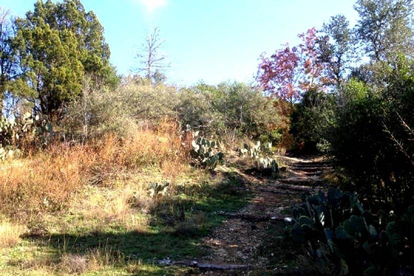 Blunn Creek Preserve is great for hiking and picnicking!!!
