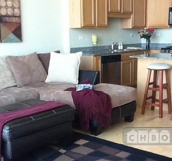 image 9 furnished 1 bedroom Townhouse for rent in Bridgeport, South Side