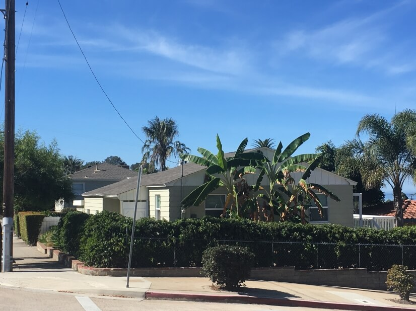 image 9 furnished 2 bedroom House for rent in Ocean Beach, Western San Diego
