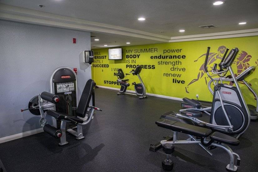 Free weights, elliptical, bike, treadmill, resistance bands