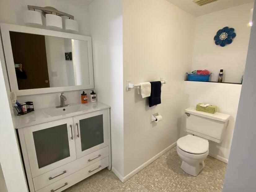 Full lower level bath