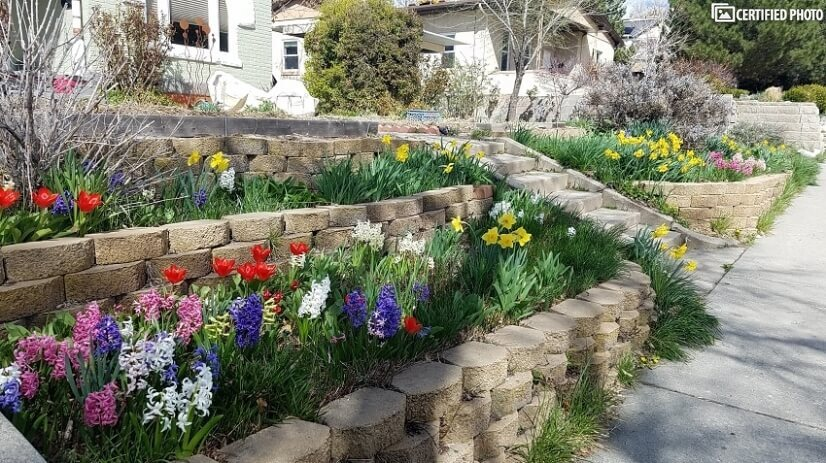 Spring blooms liven up the front.