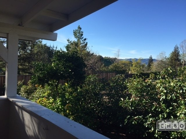 View from spacious Patio