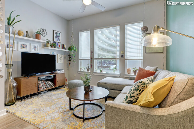 open concept with a pull out couch