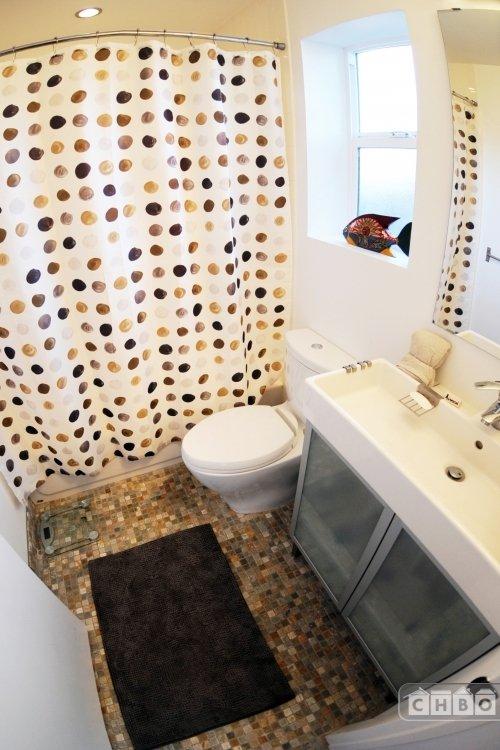 Shower over bathtub