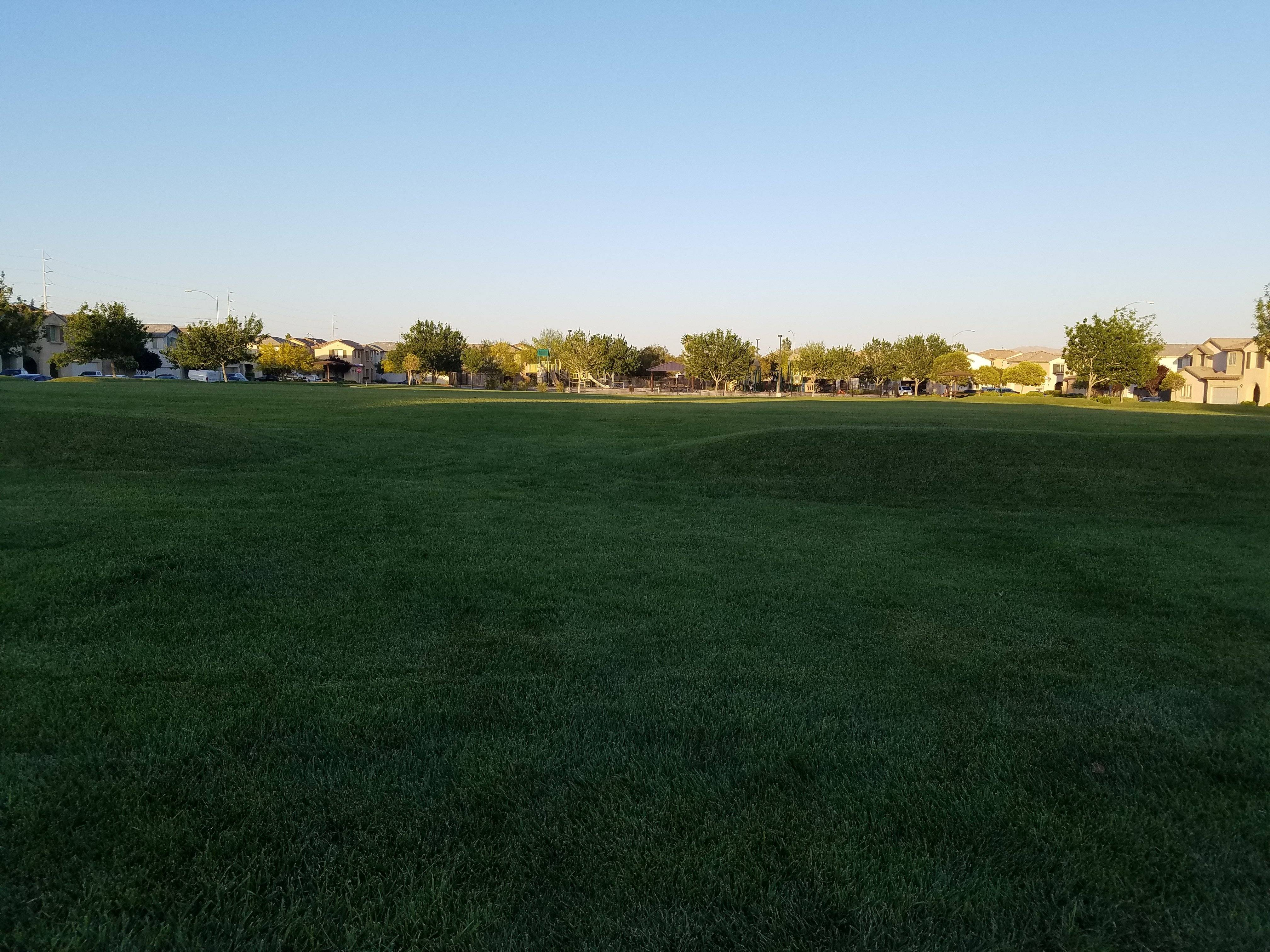 Real grass, lots of space...nice park!