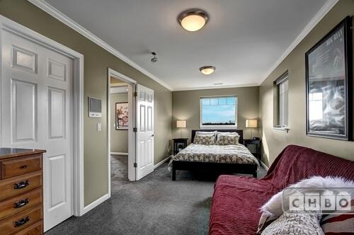 Continental Suite, Queen Bed, Futon, TV, Desk