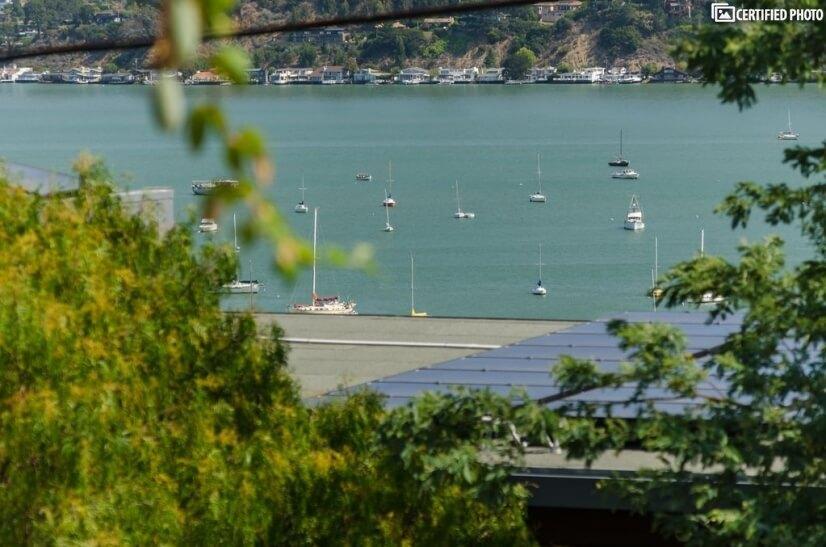 Amazing harbor views