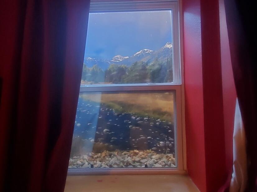 Master Bedroom Window Picture