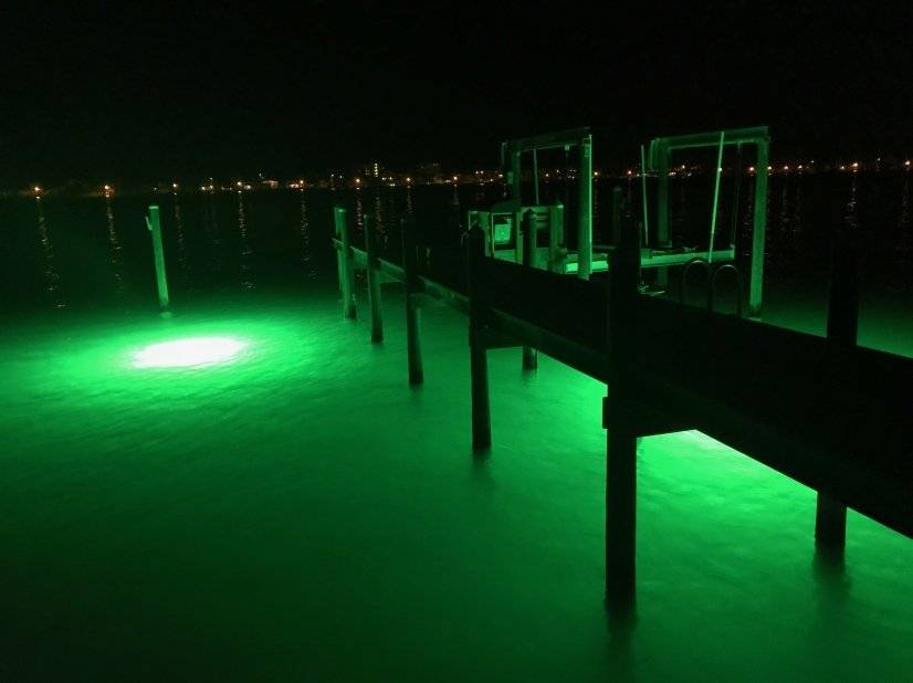 Private dock with underwater lighting attract fish & dolphin