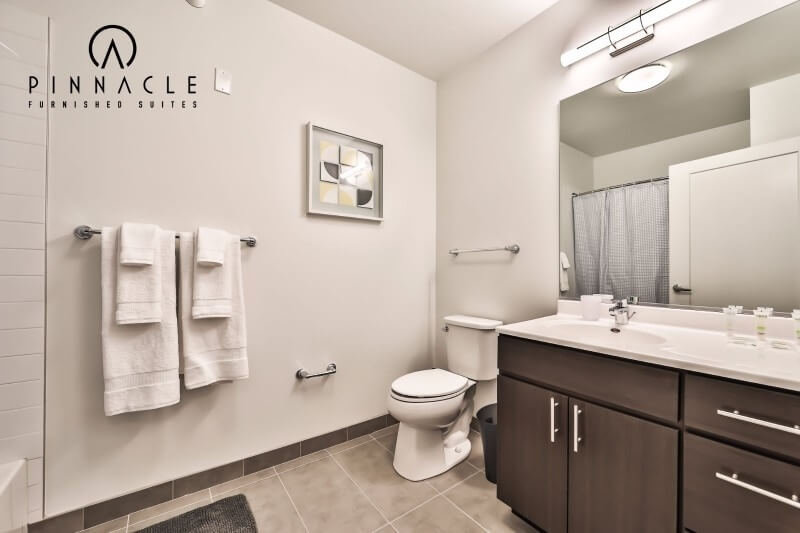 image 5 furnished Studio bedroom Apartment for rent in Near North, Downtown