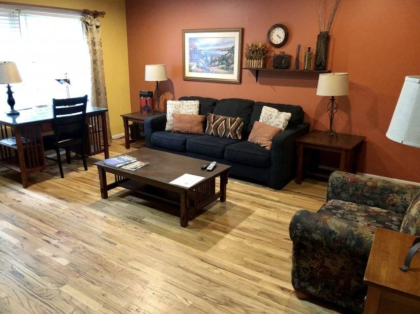 Living room / sleeper sofa