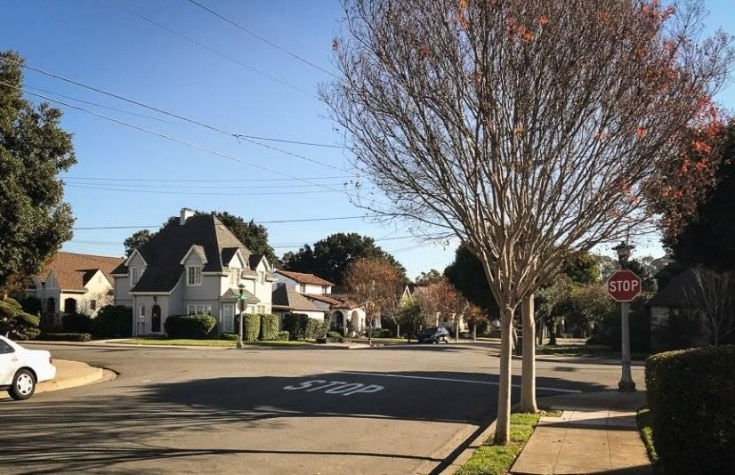 Beautiful tree lined streets throughout neighborhood