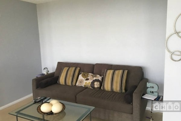 Combined Living Room Area