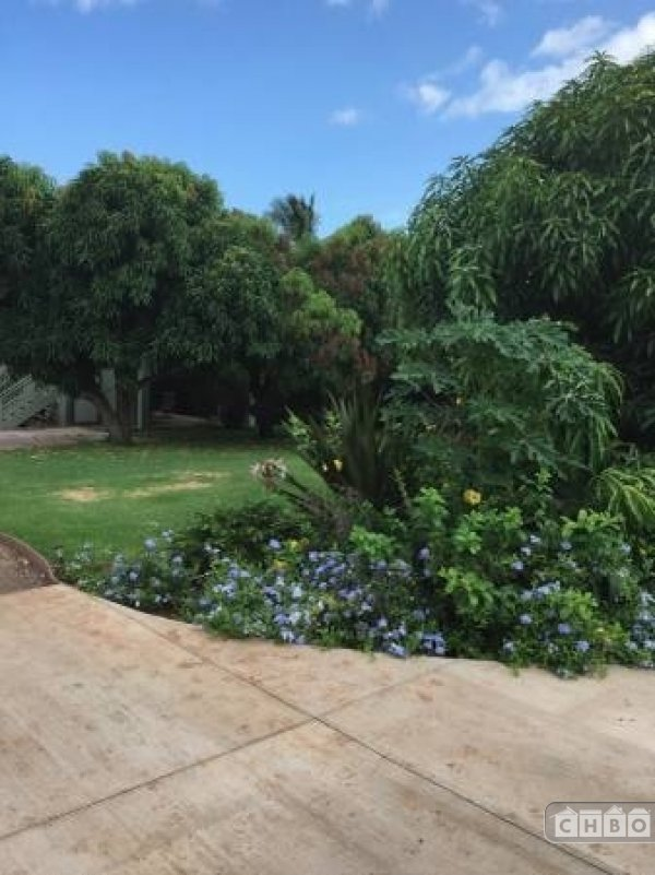 image 6 furnished 1 bedroom Apartment for rent in Kihei, Maui