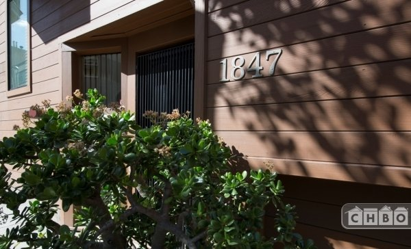 image 2 furnished 1 bedroom Townhouse for rent in North Beach, San Francisco