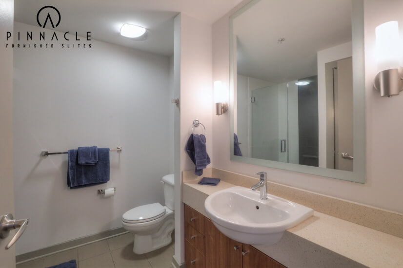 image 7 furnished 1 bedroom Apartment for rent in Nashville Central, Nashville Area