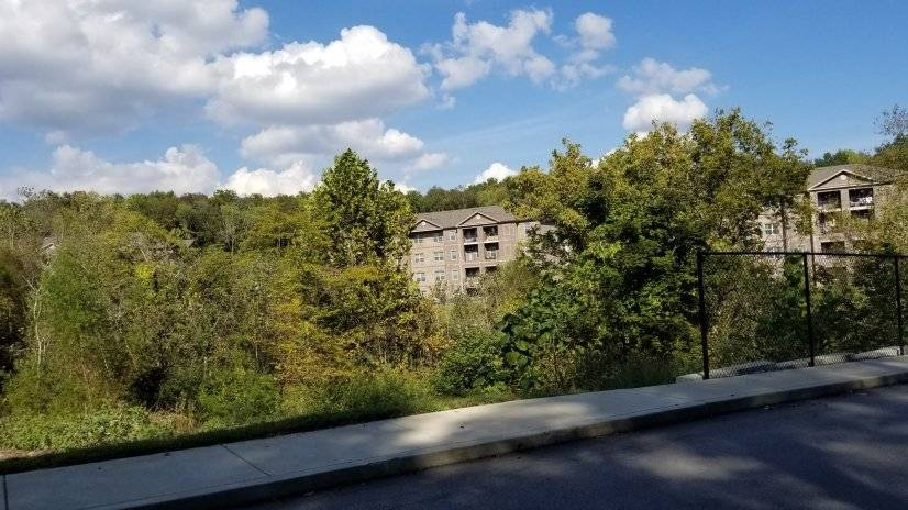 View of your apartment building tucked into the woods