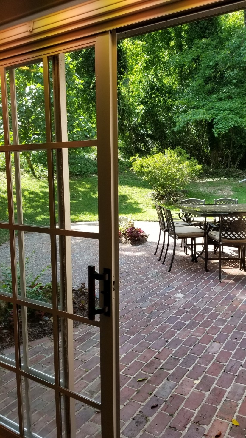 Backyard patio from downstairs den