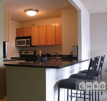 image 2 furnished 1 bedroom Townhouse for rent in Near North, Downtown