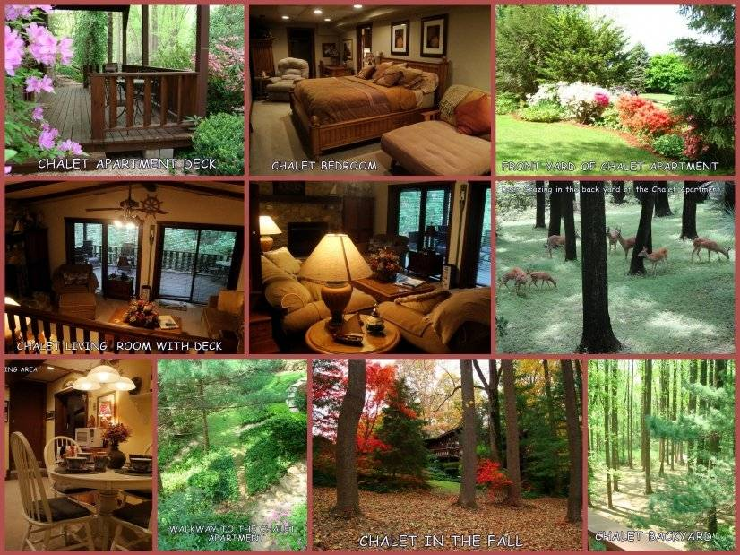 Chalet Interior and 3 acres of natural surroundings