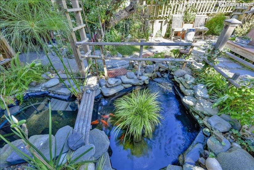 Top view of Koi pond