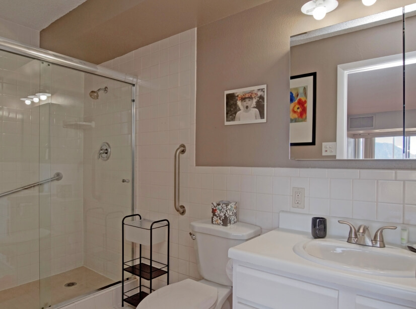 Master bath with standing shower